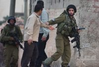 IOF troops assault old woman, arrest her son