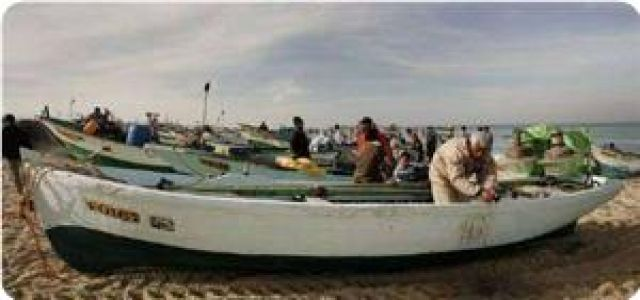 Agriculture minister denounces continued IOF shooting at fishermen