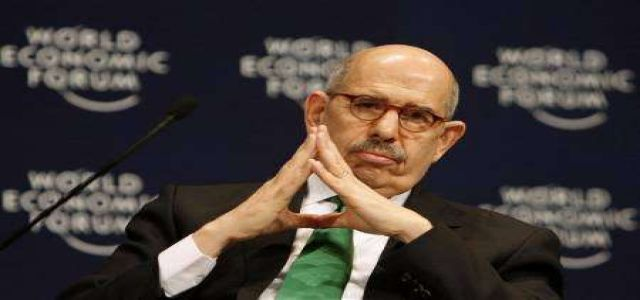 Higher education minister bans ElBaradei from talking politics on campuses